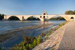 Bild von Avignon
